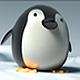 小企鹅输入法 V4.0 Linux安装版