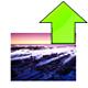 样式图片下载助手 1.2 绿色免费版