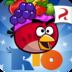 愤怒的小鸟go V1.0 for iPhone