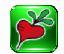 新萝卜家U盘启动工具 2.0 装机维护版