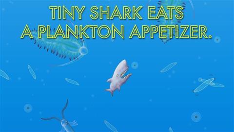 美味海底世界