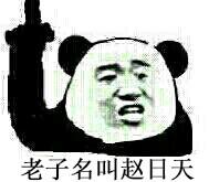 赵日天QQ表情包