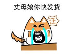 七夕情人节单身狗咆哮专用表情包图片