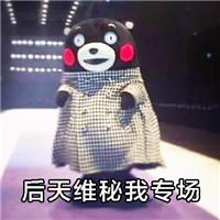 熊本熊可爱表情(维密走秀篇)熊熊本图动态包表情图片