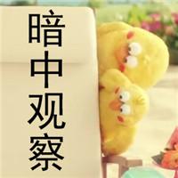 日本docomo表情妈妈表情动态(含兄弟女儿大全扇表情包鹦鹉图片