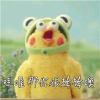 日本docomo表情兄弟大全鹦鹉(含小号动态表情表情包避孕套图片