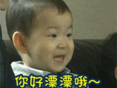 说中文的宋民国微信动态表情包大全