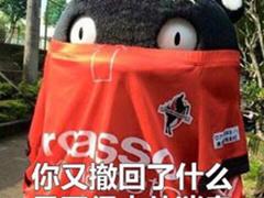 熊本熊与微信QQ撤回有关的表情包大全