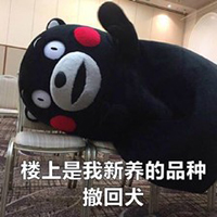 熊本熊与微信QQ撤回v大全的大全表情表情包张学友抱图片