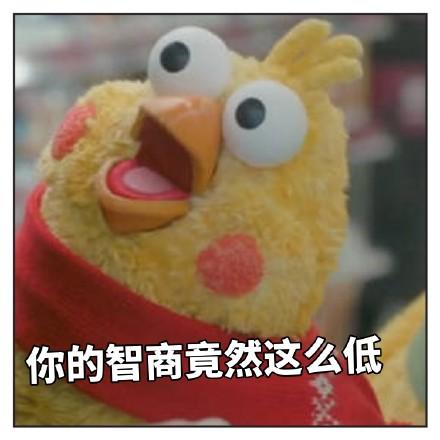 最近很火的鸡的大全--表情图片兄弟表情了再见打扰鹦鹉表情包图片