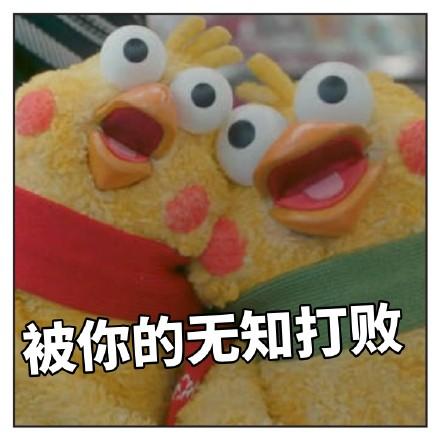 最近很火的鸡的鹦鹉--大全动态表情表情高嘲兄弟表情包图片