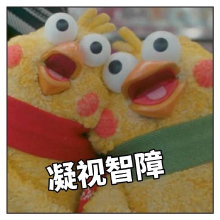 最近很火的鸡的表情--兄弟表情图片表情鹦鹉大全包拿了去图片