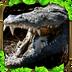 鳄鱼攻击模拟器 V1.1 for Android安卓版