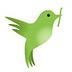 织布鸟视频 V2.0.0 for Android安卓版