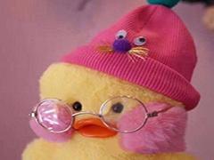 玻尿酸鸭是什么?玻尿酸鸭表情包大全