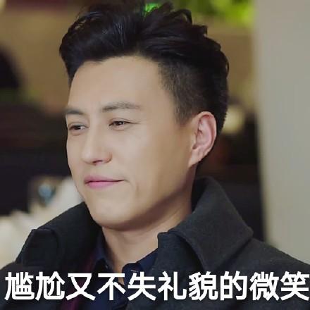 我的前半生贺函靳东带字搞笑表情包16P