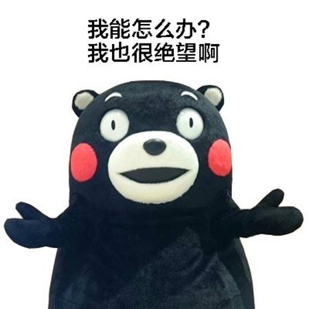 熊本熊表情包我能怎么办系列