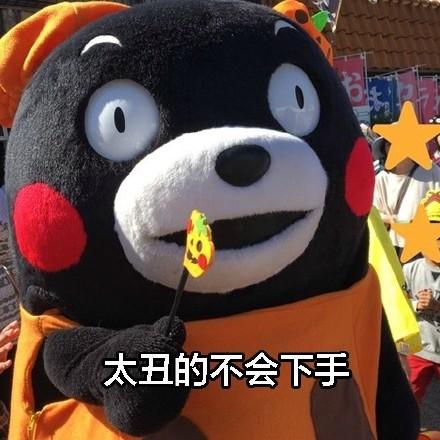 熊本熊带字单身:原因表情包图孩子可爱至今的表情下载1_QQ表图片