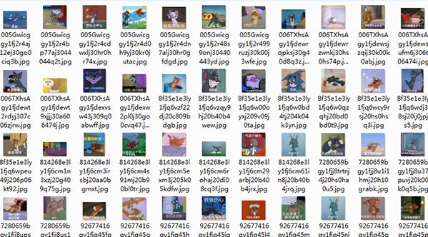 猫和老鼠系列带字表情44P小牛表情图图片