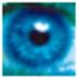 第三只眼监控软件cssrs V16.8 免费安装版