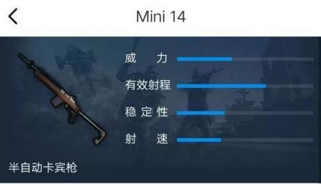 Mini 14