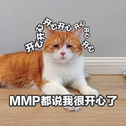 小猫咪表情包带字图片