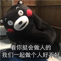 熊本熊强撩表情包