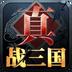 真·战三国 V0.5 for Android安卓版