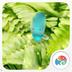 豆豆-一米阳光-梦象动态壁纸 V1.2.8 for Android安卓版
