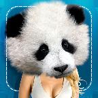 动物换脸游戏 V51.10 for Android安卓版
