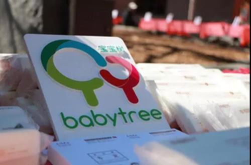 寶寶樹上市進行時