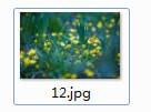 文件图片生成器