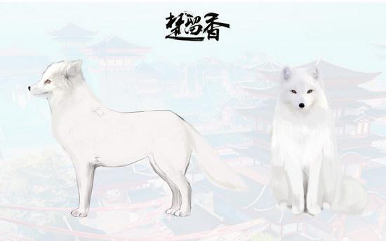 楚留香手游宠物系统即将上线 萌宠闹江湖3