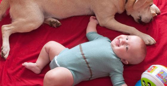 这套婴儿睡衣可以记录各项身体数据,并在出现变化时即时通知监护者,售价1000美元