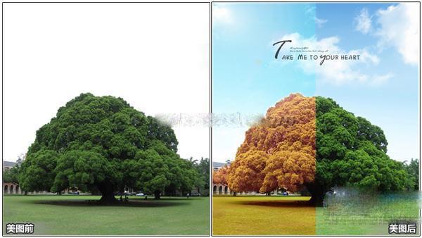 比如,一颗大树,可以让它同时拥有秋天和夏天的感觉.