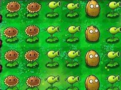 植物大战僵尸新手玩家必看攻略
