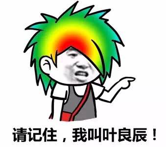 我叫叶良辰表情包